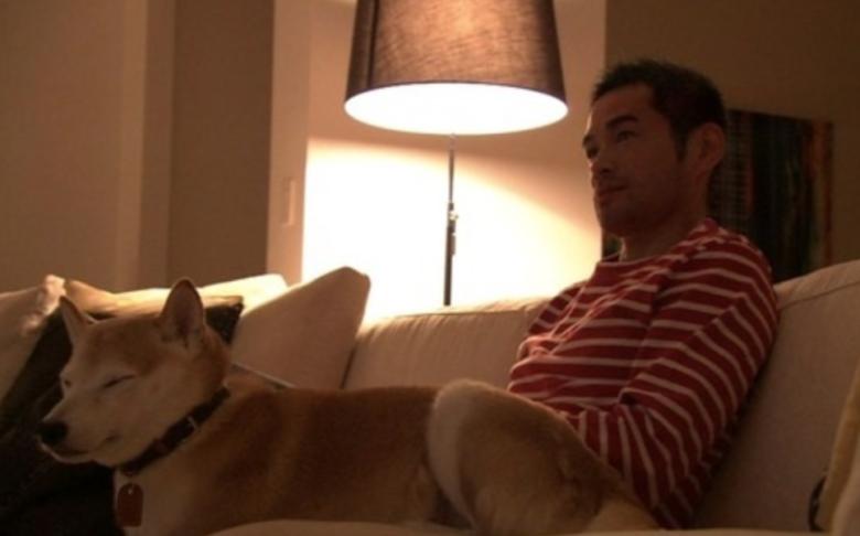 イチローの愛犬の名前は柴犬【一弓】!【宗朗】は何歳?名前の由来は?